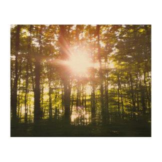 Puesta del sol que apresura cerca impresión en madera