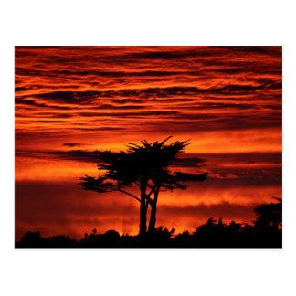 Puesta del sol roja, Santa Cruz California Postal