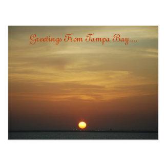 Puesta del sol sobre la postal de Tampa Bay