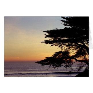 Puesta del sol y árbol, Santa Cruz (tarjeta) Tarjeta De Felicitación