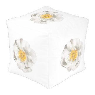 Puf Foto de la flor blanca