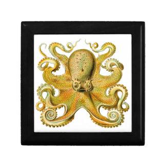 Pulpo de Ernst Haeckel del vintage en amarillo Joyero Cuadrado Pequeño