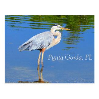 Punta Gorda, postal de FL