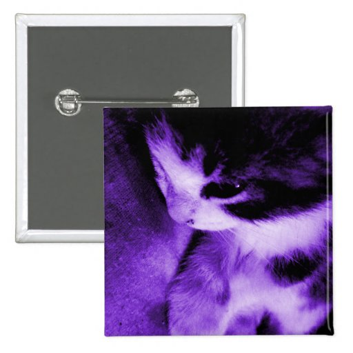 Púrpura del contraste del gatito pins