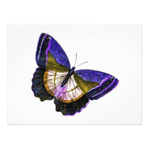 Púrpura del vintage y ejemplo de la mariposa del o comunicados personalizados