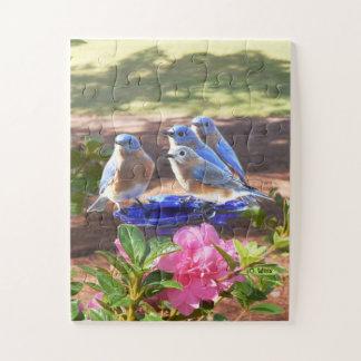 Puzzle 050 Bluebirds desconciertan para siempre a los