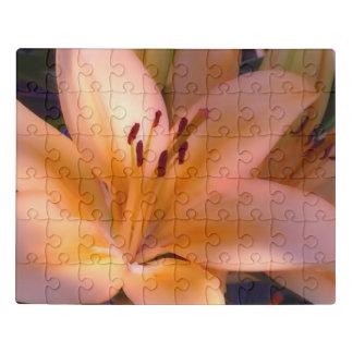 Puzzle A - Lirio anaranjado sombreado hermoso