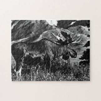 Puzzle Alces 1970 del toro de los E.E.U.U. Alaska del