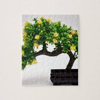 Puzzle Árbol de los bonsais