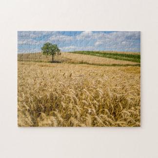 Puzzle Árbol en paisaje del campo de trigo