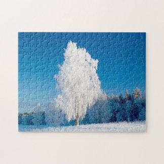 Puzzle Árboles hermosos 11x14 del invierno