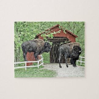 Puzzle Bisonte americano divertido en el puente cubierto