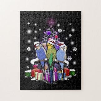 Puzzle Budgerigars con el navidad regalo y copos de nieve