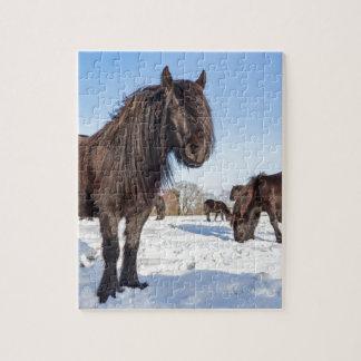 Puzzle Caballos negros del frisian en nieve del invierno
