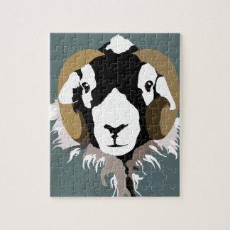 Puzzle Cabeza de las ovejas de SWaledale
