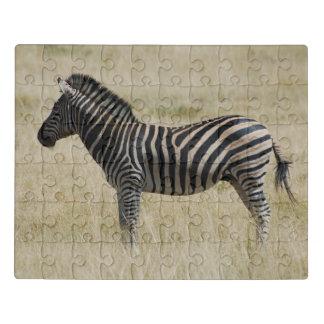 Puzzle Cebra