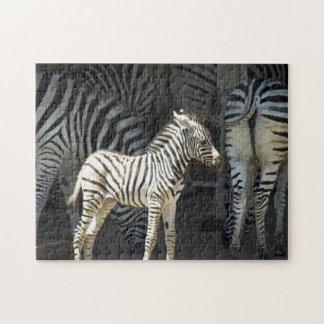 Puzzle Cebra soleada del bebé