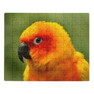 Puzzle Cierre de la cabeza del loro para arriba