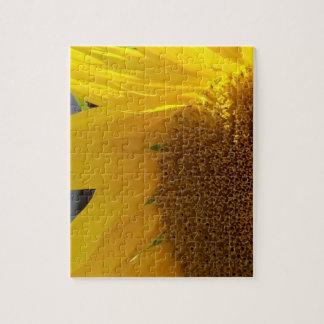 Puzzle Ciérrese para arriba del girasol amarillo