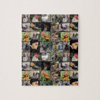Puzzle Collage de la foto de los pollos y de los gallos,