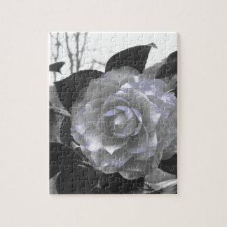 Puzzle Cultivar antiguo de la flor del japonica de la