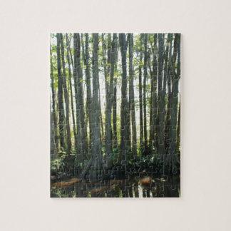 Puzzle Cypress soleado