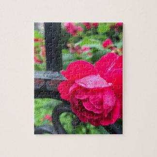 Puzzle Día lluvioso NYC de los rosas color de rosa