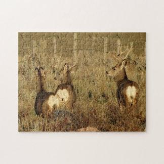 Puzzle Dólares del ciervo mula D0030