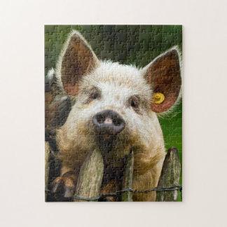 Puzzle Dos cerdos - granja de cerdo - granjas del cerdo