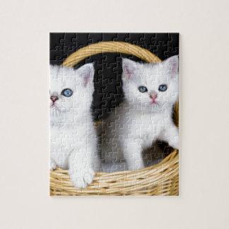 Puzzle Dos gatitos blancos en cesta en background.JP