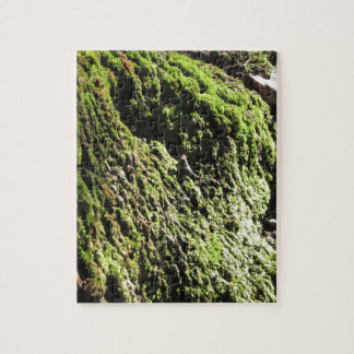Puzzle El musgo verde en el detalle de la naturaleza del