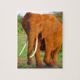 Puzzle Elefante anaranjado hermoso
