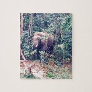 Puzzle Elefante en Tailandia