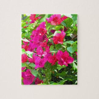 Puzzle Emblema floral del bougainvillea de la flor del