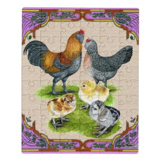 Puzzle Familia de Ameraucana enmarcada