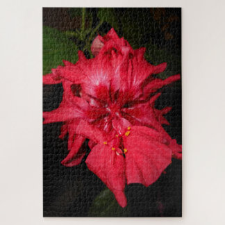 Puzzle Flor roja completamente abierta del hibisco
