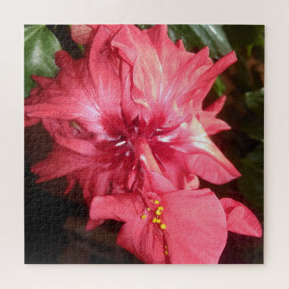 Puzzle Flor roja del hibisco