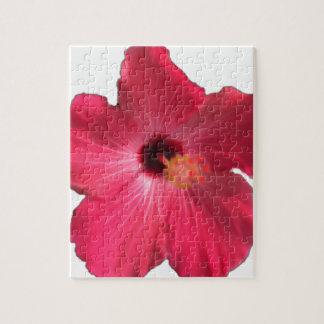 Puzzle Flor rosada 201711e del hibisco