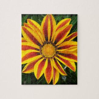 Puzzle Foto anaranjada hermosa de la flor de Sun