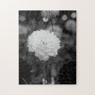 Puzzle Foto blanco y negro de la dalia