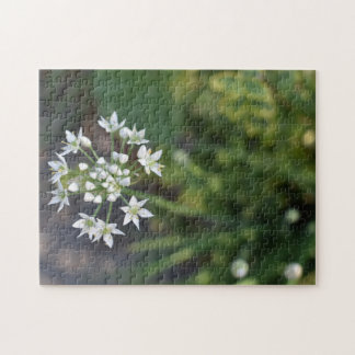Puzzle Foto floral delicada de la naturaleza del flor de