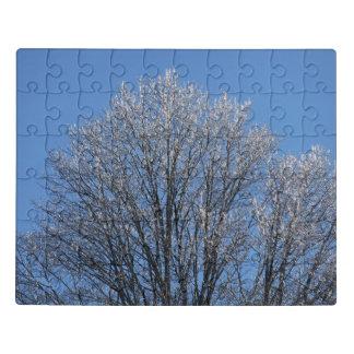 Puzzle Frost cubrió árboles por mañana