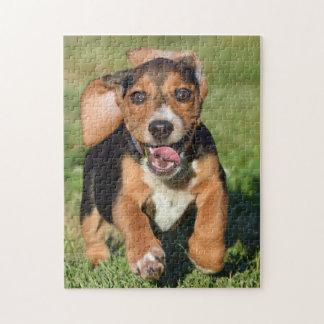 Puzzle Funcionamiento loco del perrito del beagle
