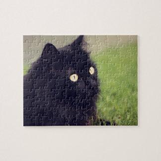 Puzzle Gato negro observado amarillo hermoso