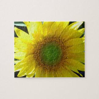 Puzzle Girasol amarillo brillante