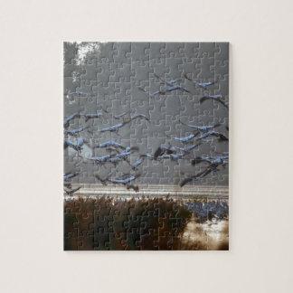 Puzzle Grúas del vuelo en un lago