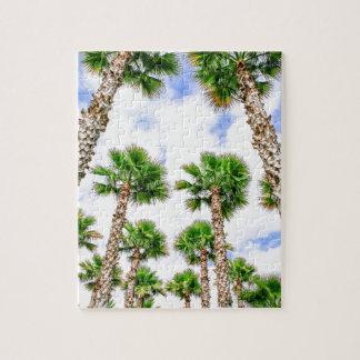 Puzzle Grupo de altas palmeras rectas