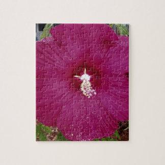 Puzzle hibisco rojo oscuro grande