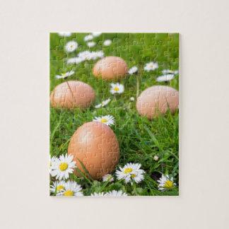 Puzzle Huevos del pollo en hierba de la primavera con las