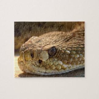 Puzzle La cabeza de la serpiente del traqueteo